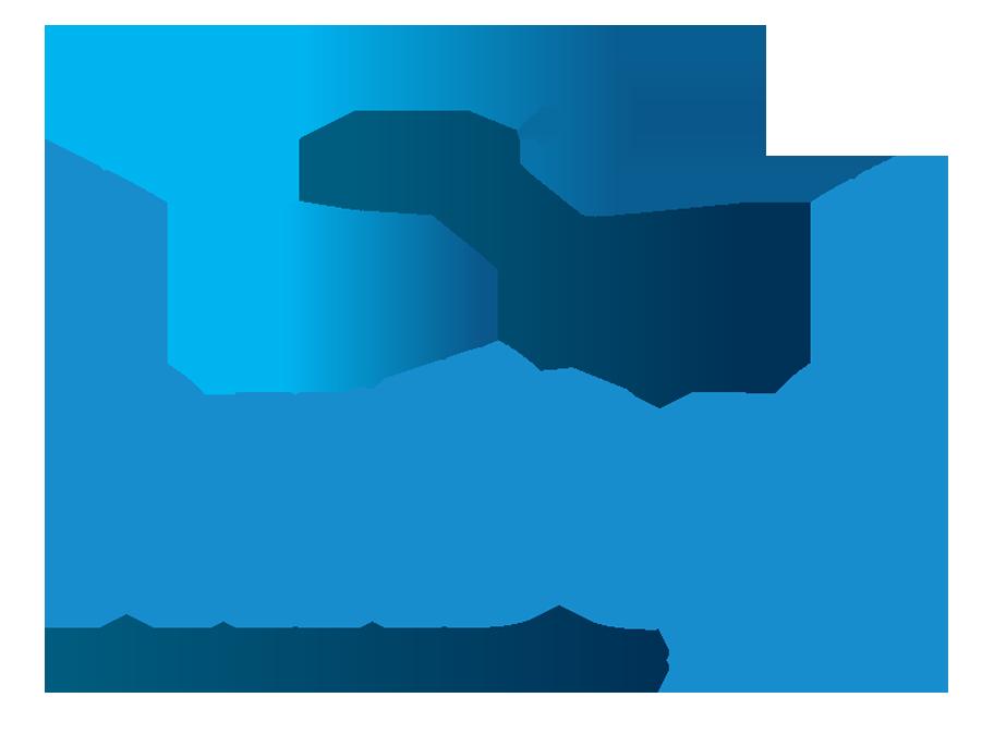 Rebus Intl. Inc.